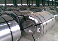 Cina G 550 Steel Galvanized Coil Full Hard 600 - Lebar 1250mm pabrik
